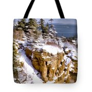 Snow In The Park Acadia Maine Tote Bag