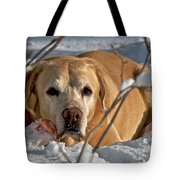 Snow Lab Tote Bag
