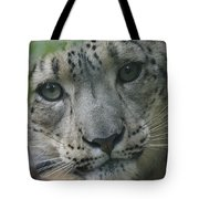 Snow Leopard 10 Tote Bag