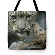 Snow Leopard 11 Tote Bag