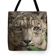 Snow Leopard 13 Tote Bag