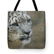 Snow Leopard 8 Tote Bag