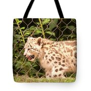 Snow Leopard Cub Tote Bag