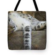 Snow Leopard Nap Tote Bag