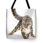 Snow Leopard On The Prowl Viii Tote Bag