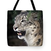 Snow Leopard Portrait Tote Bag