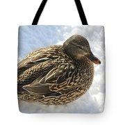 Snow Mallard Tote Bag