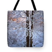 Snow Maple Morning Tote Bag