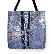 Snow Maple Morning Landscape Tote Bag