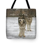 Snow Mates Tote Bag