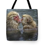 Snow Monkey Kisses Tote Bag