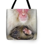 Snow Monkey Love Tote Bag