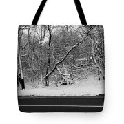 Snow On Fallen Tree Tote Bag