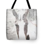 Snow On Paint Tote Bag