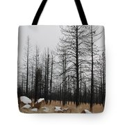 Snow On Rocks Tote Bag