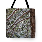 Snow On The Branches Tote Bag