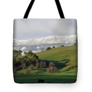 Snow On The Great Western Tiers, Tasmania Tote Bag