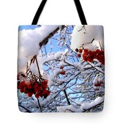 Snow On The Mountain Ash Tote Bag