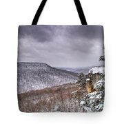 Snow On The Plateau Tote Bag