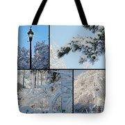 Snow Scenes Of Charleston Sc Tote Bag