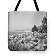 Snow Settles On The Lake Shore Tote Bag