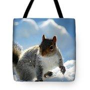 Snow Squirrel Tote Bag