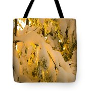 Snow The Day After Tote Bag