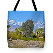Snow-topped Mountains From Tahquitz Canyon Way In Palm Springs-california  Tote Bag