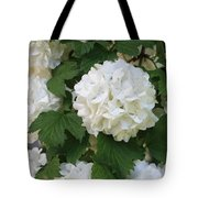 Snowball Tree With Delicate Leaves Tote Bag