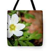 Snowdrop Anemone Tote Bag