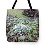 Snowdrop Glade Tote Bag