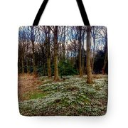 Snowdrop Woods 2 Tote Bag