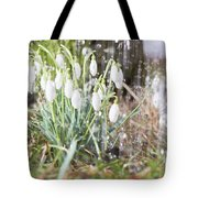 Snowdrops In The Garden Of Spring Rain 7 Tote Bag