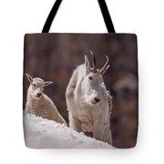 Snowfield Tote Bag