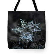 Snowflake Of 19 March 2013 Tote Bag