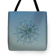 Snowflake Photo - Twelve Months Tote Bag