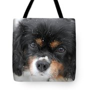 Gentle Snow Tote Bag