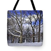 Snowman In Central Park Nyc Tote Bag