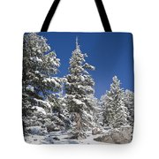 Snowscape 2 Tote Bag