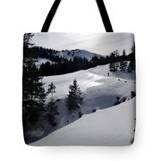 Snowshoeing Switzerland's La Berra Tote Bag
