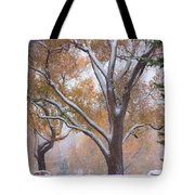 Snowy Autumn Landscape Tote Bag by James BO  Insogna