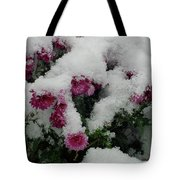Snowy Chrysanthemums Tote Bag
