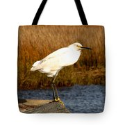 Snowy Egret 1 Tote Bag