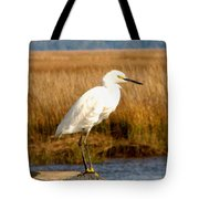 Snowy Egret 2 Tote Bag