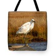 Snowy Egret 3 Tote Bag