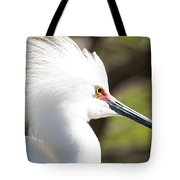 Snowy Egret Closeup Tote Bag