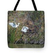 Snowy Egret Confrontation 8664-022018-1 Tote Bag