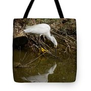 Snowy Egret Fishing From Branches Tote Bag