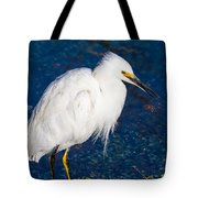 Snowy Egret In Afternnon Light Tote Bag