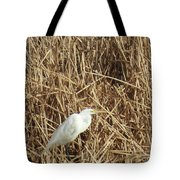 Snowy Egret In Tall Grasses Tote Bag